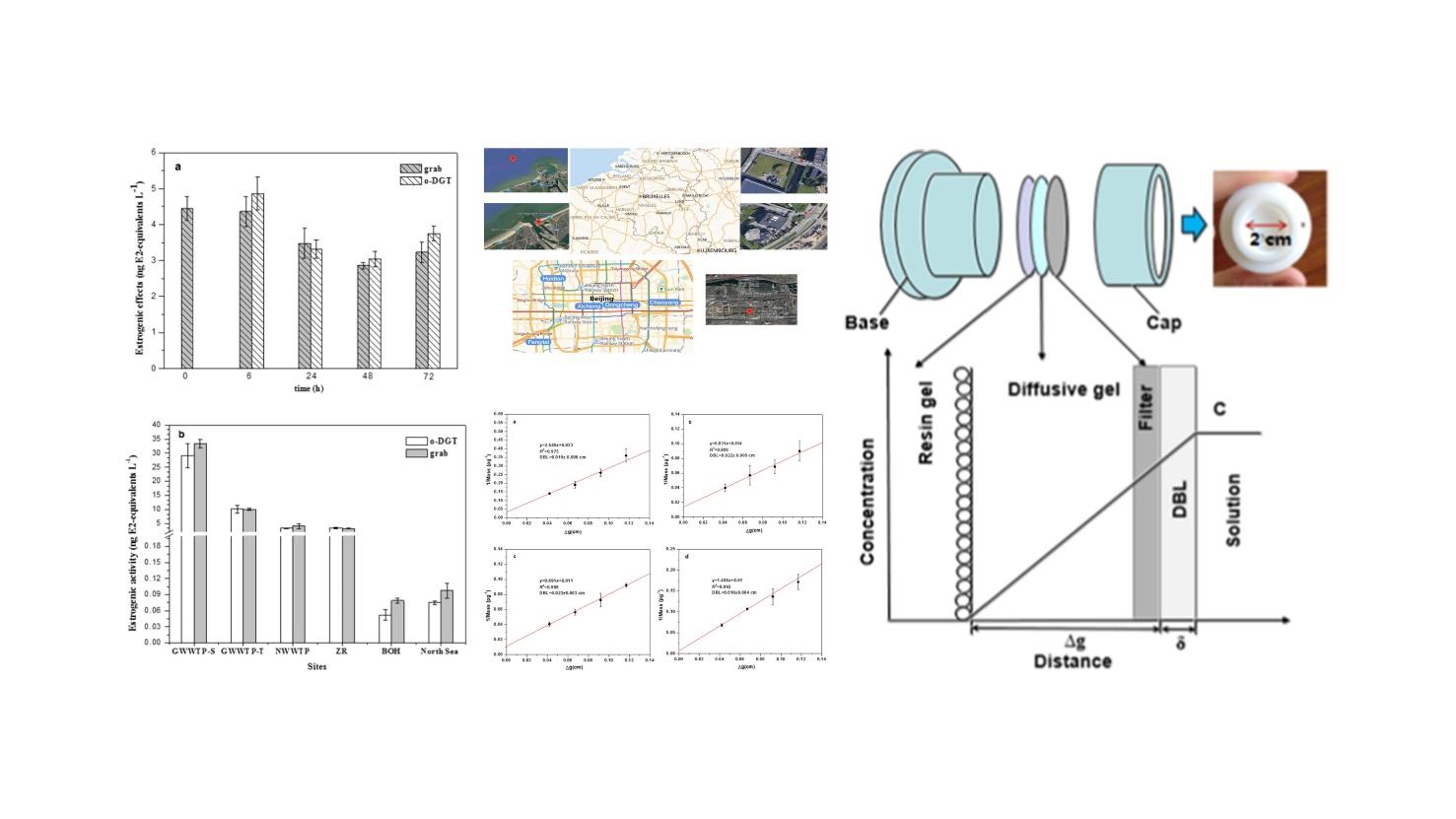 梯度扩散薄膜有机技术结合Ere-Calux生物测定法在水生系统中雌激素活性原位监测的应用